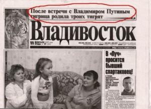 Путин - отец тигрят